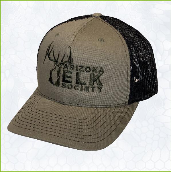 6c075928b4698 AES Logo Richardson Loden Green Dark Hat